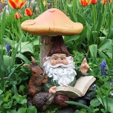 cheap garden gnomes. Miss Book Worm Bernard The Outdoor Garden Gnome With Statue Cheap Gnomes N