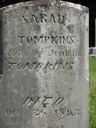 """Sarah """"Sally"""" Polly Tompkins (Pierce) (1809 - 1893) - Genealogy"""