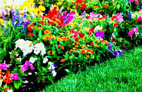 lush landscaping ideas. Garden Design With Lush Landscaping Ideas For Your Front Yard And Home Flowers Gardens Flower Sky