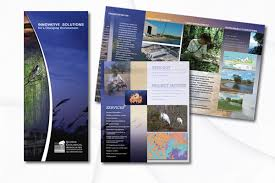 Graphic Design Services, Brochure Design, Logo Design, Corporate ...