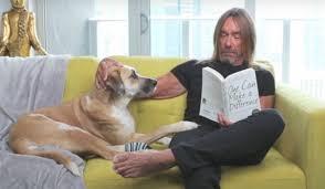 Stream <b>Iggy Pop's</b> Bedtime Story About His Dog Tromba ...