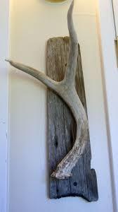 Diy Antler Coat Rack diy deer antler key holder Pinteres 55