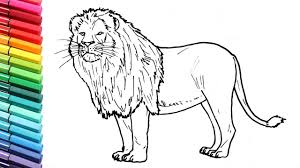 animal color pictures. Fine Color How To Draw A Lion  Learning Wild Animals Color Pages For Kids  Colors With For Animal Pictures