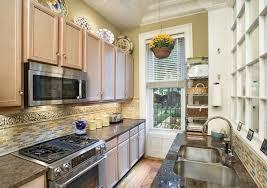 Small Picture Small Modern Kitchen Galley Design Ideas Home Design and Decor
