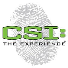 Image result for csi logo