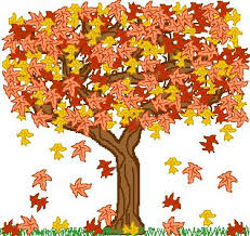 Image result for autumn pics for presc preschoolers
