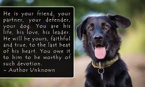 Dog Quotes Love And Loyalty Mesmerizing Famous Dog Quotes Which Will Make You Fall In Love With Your Pet