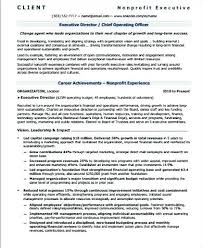 Sample Resume For Non Profit Organization Best of Sample Resumes For Executives Resume Bank