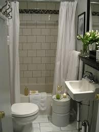 Brilliant Small Bathroom Remodel Ideas With Cute Closet Side Unusual Wash  Bowl Closed Big Mirror Plus Black Floor And Glass Door Facing Beautiful  Garden