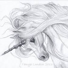realistic unicorn drawings unicorn drawing in pencil gray unicorn whispwan graphite horses my first love unicorn drawing graphite and