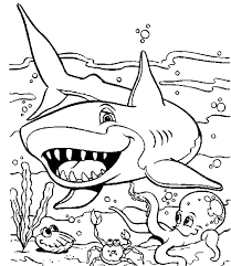Small Picture Easy shark coloring sheets pipress Grootfeestinfo