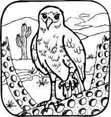 Dieren Kleurplaten Een Machtige Roofvogel Die Ons Aanstaart