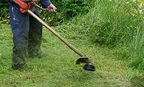 Risultati immagini per sfalcio erba
