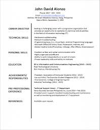 Text Only Resume Format