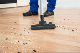 You Can Use A Vacuum Cleaner To Suck Out The Dust And Hairs Before You Mop  The Floor. When Doing This, Only Use The Suction. Do Not Attach The Beater  Bar, ...