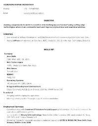 Resume Objective For Software Engineer Software Developer Resume