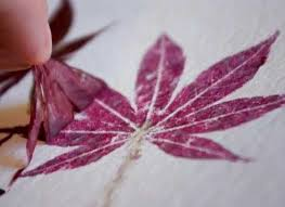 projects hammered flower leaf prints