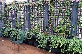 Small Picture Nyc Garden Design Garden ideas and garden design