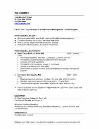 Retail Sales Associate Job Description On Resume Sales Associate Retail Sales Associate Resume Cover Letter Luxury     Brefash