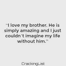 I Love My Brother Quotes Custom Quotes About Brothers Best Brothers Quotes Sayings