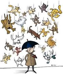 raining cats and dogs clipart.  Dogs Is Raining Cats And Dogs Language Activities Teaching Arts  English Speech Intended Raining Cats And Dogs Clipart