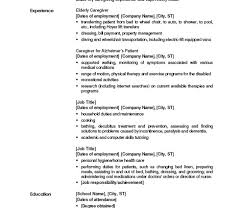 Gallery Of Resume Objective Examples For Teenagers Technology