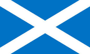 Image result for scotland mini flag
