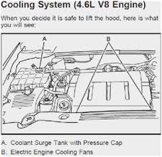 60 unique pics of 4 6 northstar engine diagram diagram labels 4 6 northstar engine diagram marvelous solved how to replace water pump on 2006 buick lucerne of