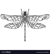 Hand Drawn Sketch Dragonfly Tattoo