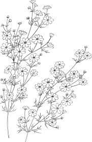 花のイラストフリー素材白黒モノクロno043白黒茎葉
