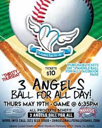 Brevard County Manatees Baseball Game Fundraiser