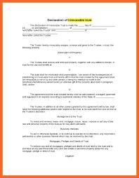 8 9 Declaration Sample Resumesgood