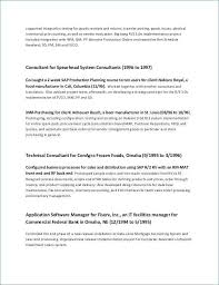 Summary On A Resume Examples Adorable Summary In A Resume Inspirational Summary On A Resume Best Of Job