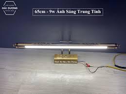 Bảng giá Đèn soi tranh - Đèn rọi gương Led Đèn soi gương cổ điển 6071 9w /  12w ánh sáng trắng ấm trung tính 4000K