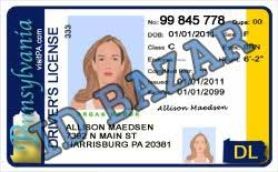 Template License Driver Psd Pennsylvania