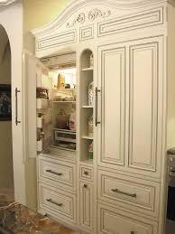 refrigerator that looks like a cabinet. Plain That Kelowna Appliances Integrated Refrigerator Designs Youu0027ll Love  Genieru0027s  Appliances Inside That Looks Like A Cabinet T