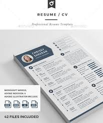 Gallery Of 10 All Time Best Premium Simple Infographic Resume Cv