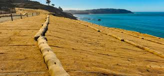 Comprehensive List Of Erosion Control Techniques And Methods