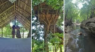 treehouse. Sleeping In A Tree House Sri Lanka Near Sigiriya [in The Forest] Treehouse