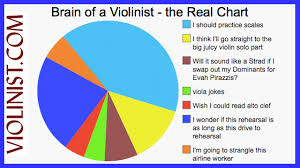 Brain Chart Brain Of A Violinist The Real Chart