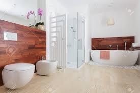 Moderne Weiße Badezimmer Mit Dusche Und Badewanne Lizenzfreie Fotos