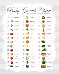 Baby Length Chart By Month 34 Accurate Baby Size Chart Week By Week