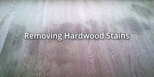 cat urine hardwood floor cat urine wood floor hardwood floor cleaning remove cat urine from laminate