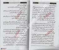 essay in urdu  essays on essay hockey in urdu through essay depot