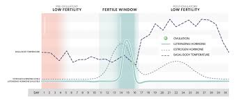 Estrogen And Progesterone Levels In Pregnancy Chart What Your Hormone Data Can Tell You About Your Fertility