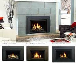 regency gas fireplace remote control fireplace screens menards