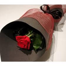 single red rose in oakville on ann s
