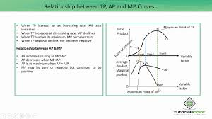 Relationship Chart In Hindi Relationship Between Tp Ap And Mp Curves