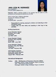 pet sitter resume cv babysitter resume template   singlepageresume compet sitter resume cv babysitter resume template