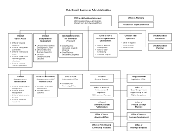 International Business Organization Chart International